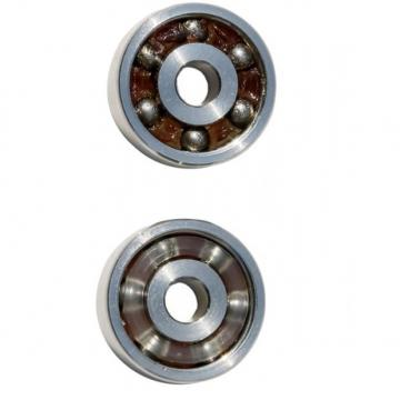 SKF NSK NTN FAG Top Quality Competitive Price Self-Aligning Ball Bearing 2205 2RS